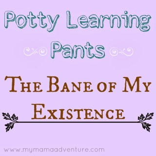 Potty Learning Pants - The Bane of My Existence