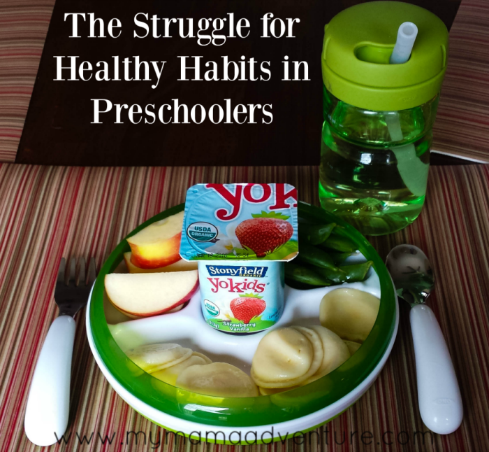 The Struggle for Healthy Habits in Preschoolers - My Mama Adventure
